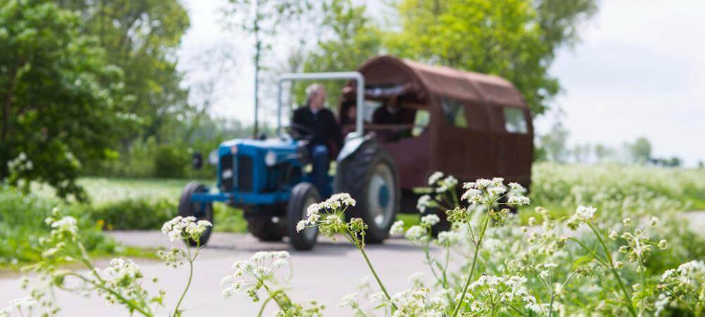 The tractor and carriage!
