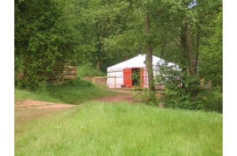 Yurt from afar