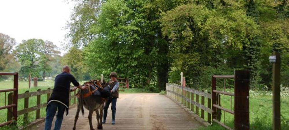 Lots of horse riding available