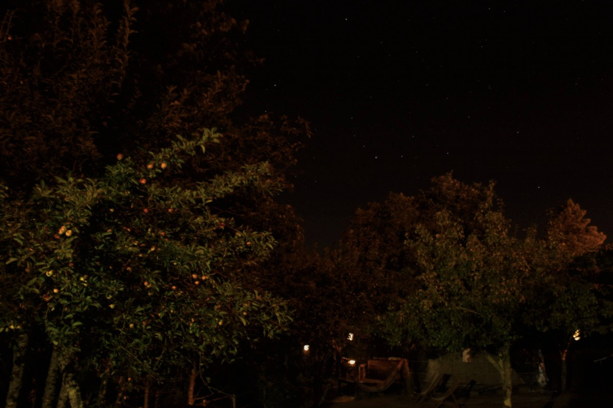 Night sky from Eastern yurt deck