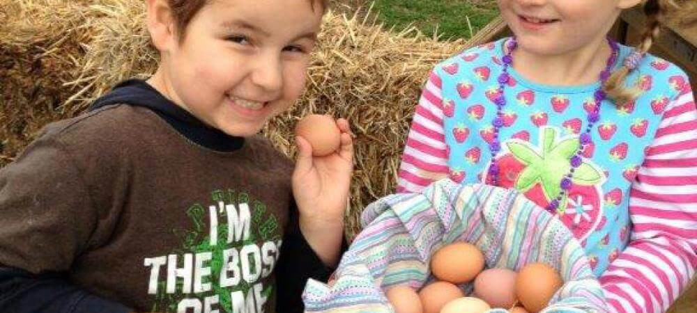 Happy faces after collecting the eggs!