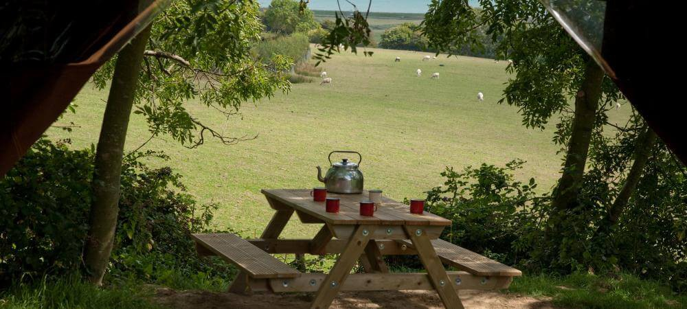 Perfect place for a cup of tea!
