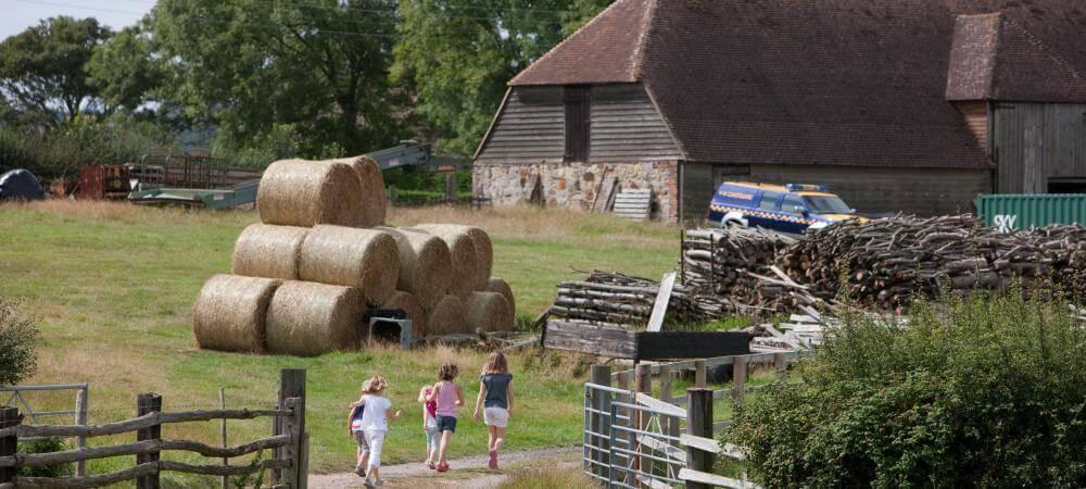 The working farm!