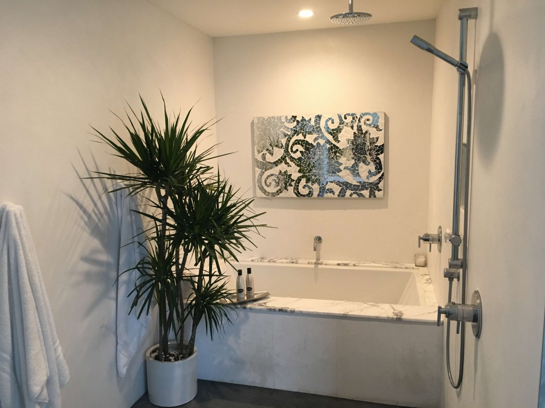 Spa Bathroom shower