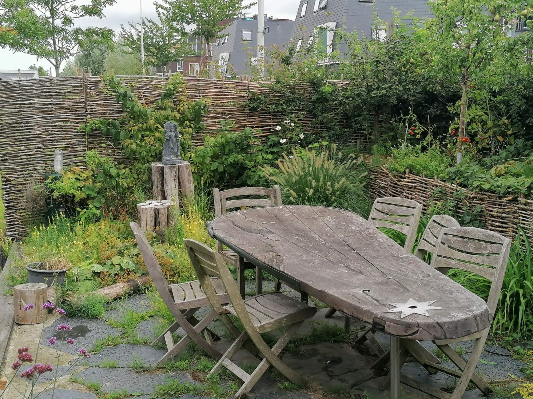 Large green romantic garden