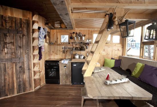 Beautifully designed tree house