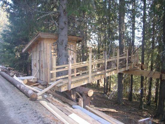 Bridgeway to tree house