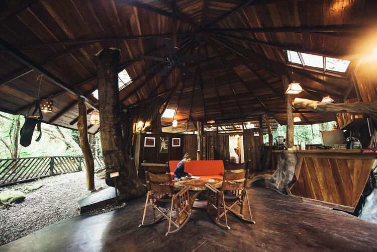 Tree House living room 3