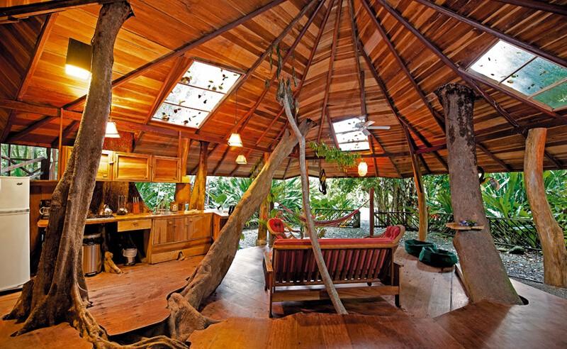 Tree House living room 2