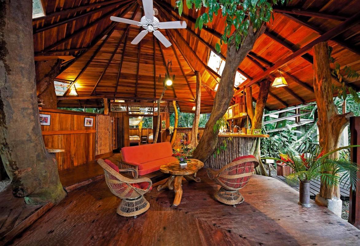 Tree House living room 4