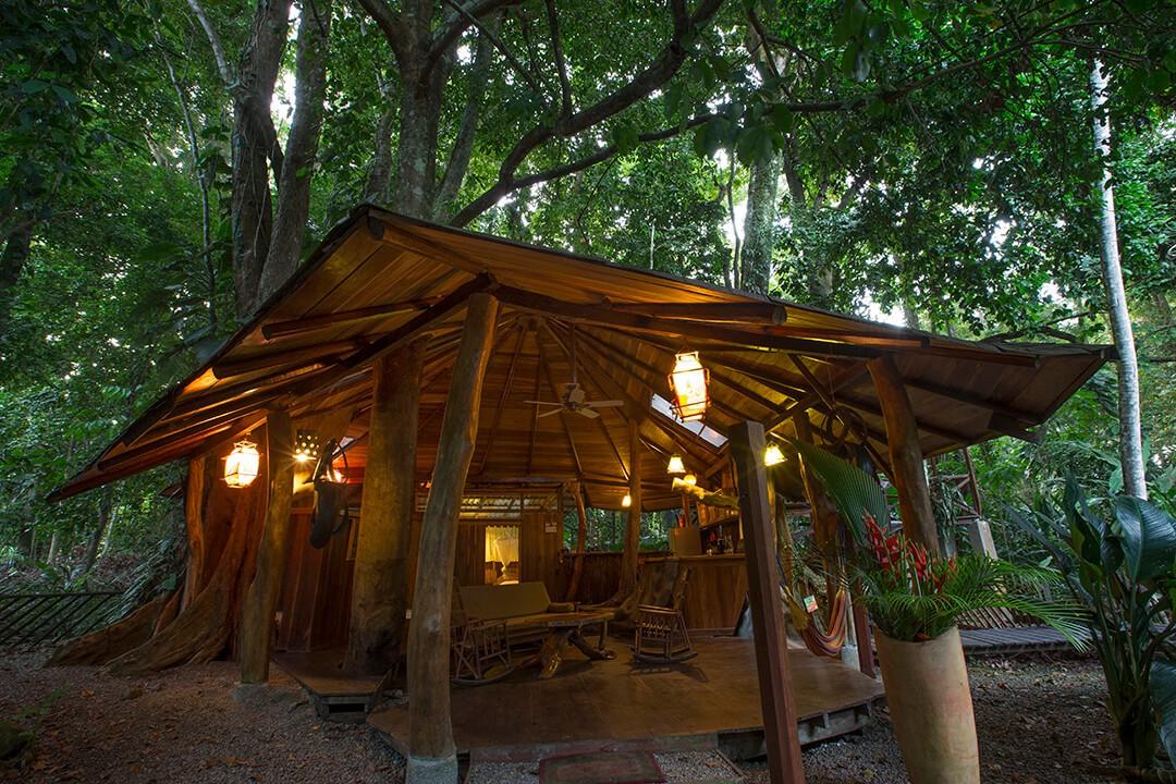 Tree House outside 7