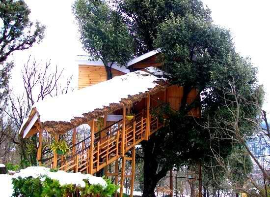 The treehouse during winter