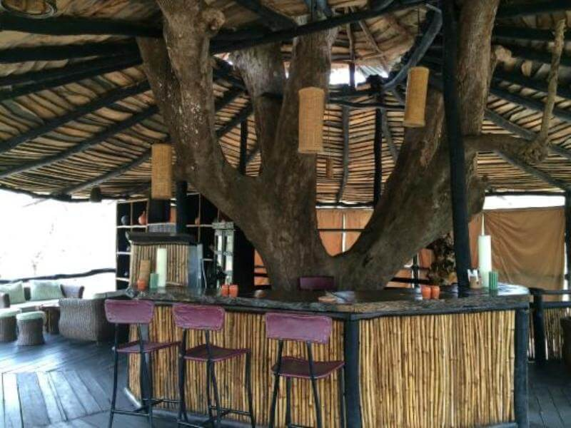 Bar and Lounge at Tree House Hideaway