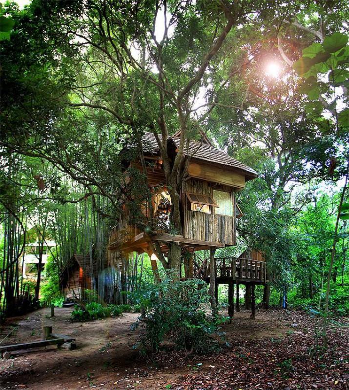 Longan House