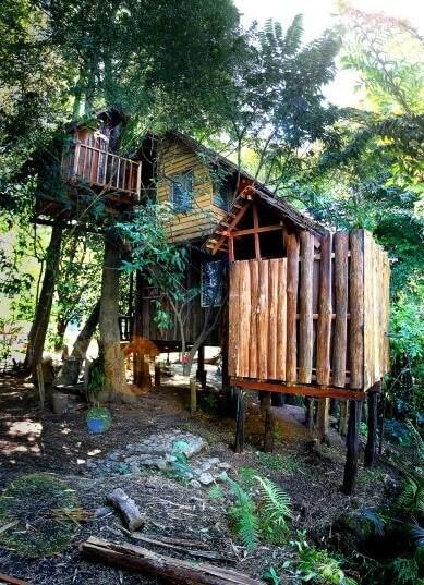 Coconut Family Treehouse