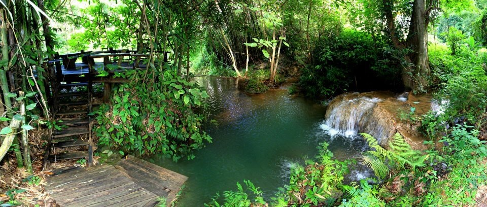 Your very own natural pool