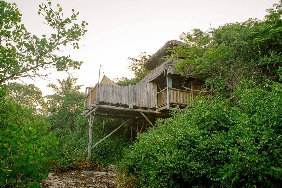 The Saba treehouse from outside