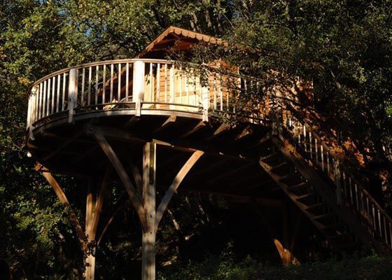 Treehouse with Round Sunny Terrace