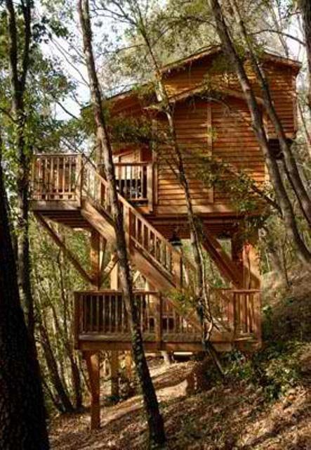 Lofty Two-Storey Treehouse