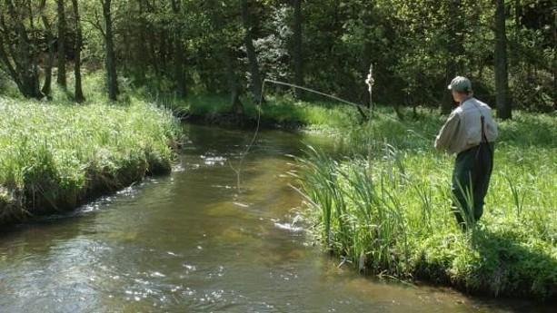 Nearby stream (900 m) Snarjebacken with excellent Rainbow Trout fishing April-November