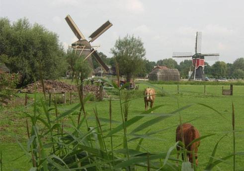 Houseboat 198 Utrecht photo 5