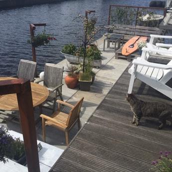 Houseboat 459 Amsterdam photo 2