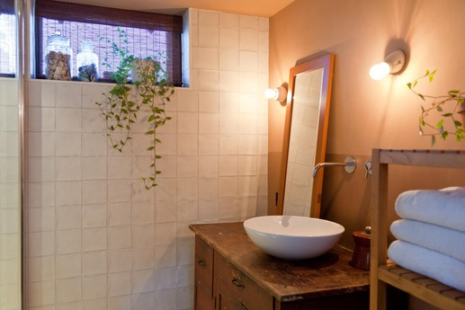 Extra bathroom with shower and toilet