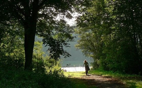 The Amsterdamse Bos is a 15-minute walk away. The Amsterdamse Bos is 3x bigger than Central Park in New York.