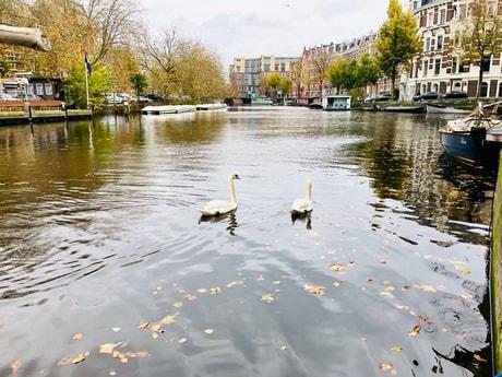 Houseboat 794 Amsterdam photo 4