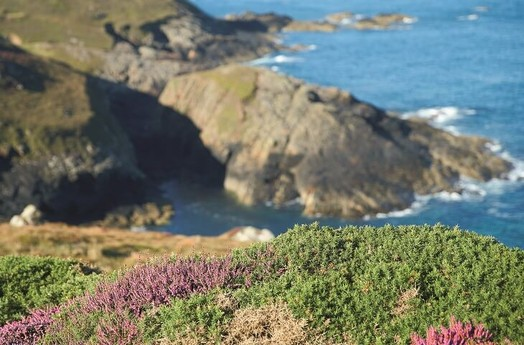 Lighthouse 68 Penzance photo 7