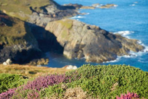 Lighthouse 68 Penzance photo 2