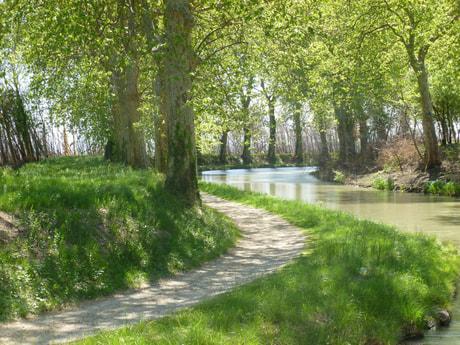 River trip 31 Béziers photo 16