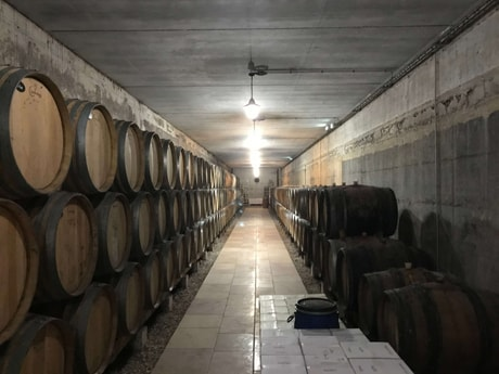 6-night all-inclusive cruise through the hills and villages of Northern Burgundy; enjoy gastronomy and adventure with our full crew at your service - Wine production