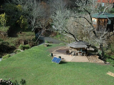 Overview of the tree house