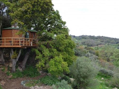 Treehouse 141 Rethymnon photo 5