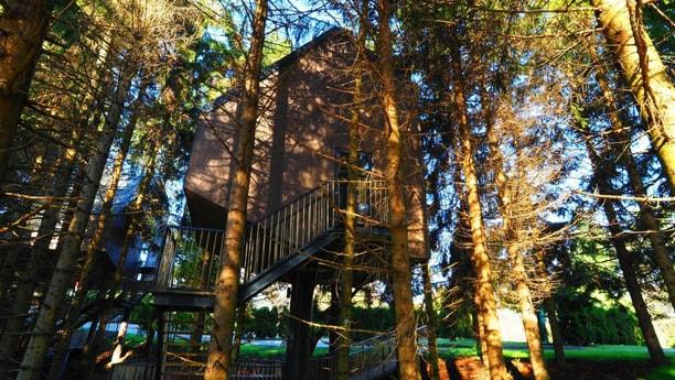 Treehouse 151 Plitvice Lakes photo 5
