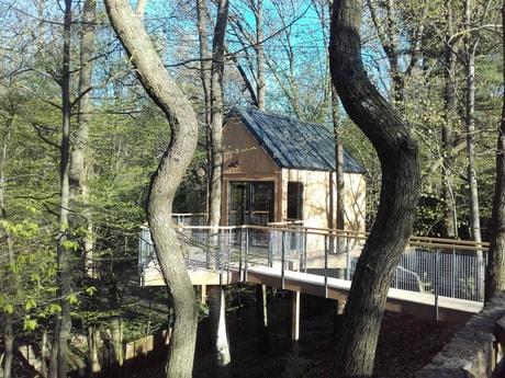 Treehouse 153 Modra Harmonia photo 13