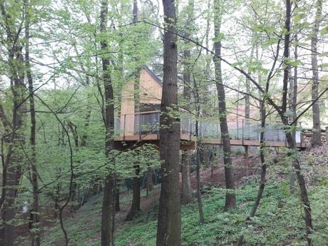 Treehouse 153 Modra Harmonia photo 12