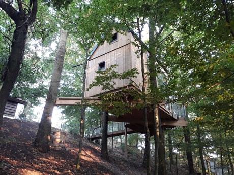 Treehouse 153 Modra Harmonia photo 11