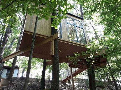 Treehouse 153 Modra Harmonia photo 10