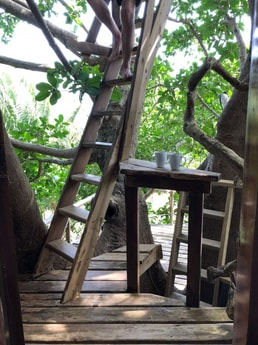 Steps to the top deck for a cup of delicious Honduran coffee with the hummingbirds and woodpeckers.