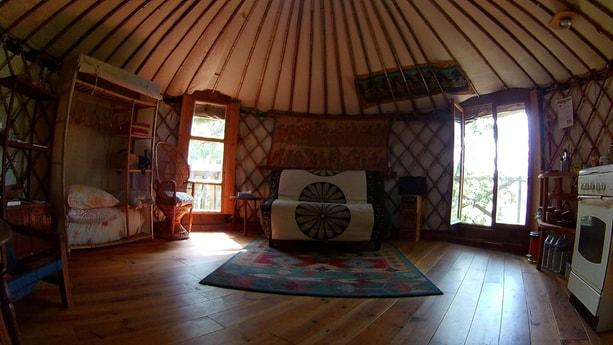 Treehouse 157 Pèalouse photo 6