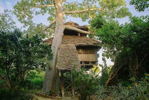 Treehouse in Tanzania