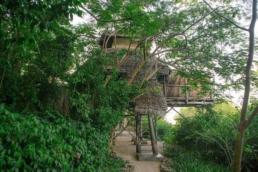 The path to Saba