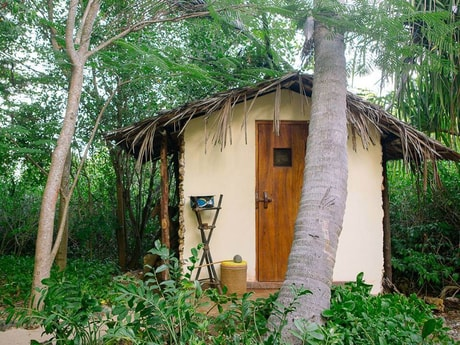The outhouse of the Saba treehouse