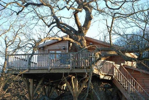 Treehouse 61 Bellou-le-Trichard photo 3