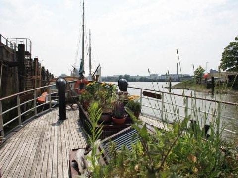 Houseboat rental Rotterdam - Loftboat Kralingen