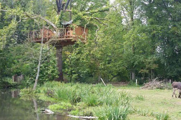 Treehouse France