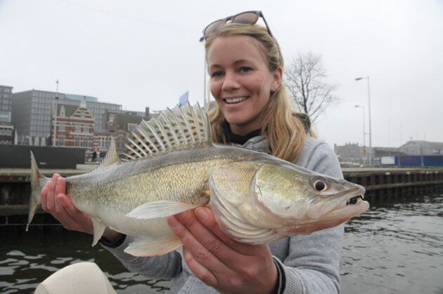 Capital zander fishing - houseboat amsterdam