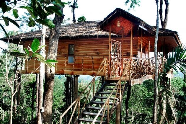 The most amazing treehouse rentals